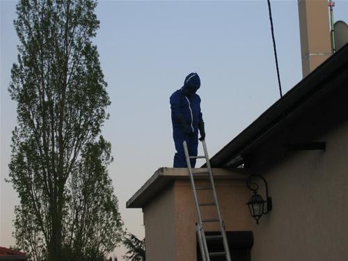 Comment traiter les guepes la r ponse est sur - Comment detruire un nid de guepes sous les tuiles ...