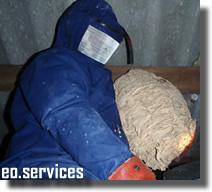 Applicateur Hygieniste dans la destruction d'un nid de guepes
